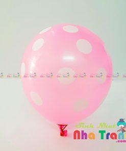 bong bóng chấm bi hồng tại nha trang